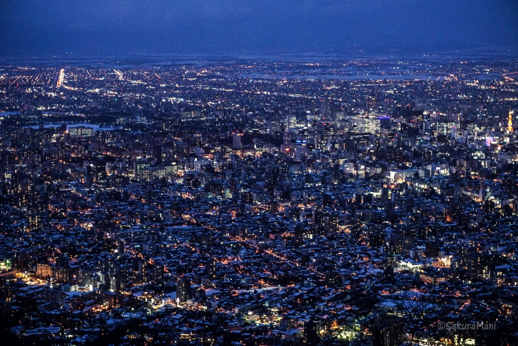 Sapporo city by night from mount Moiwa