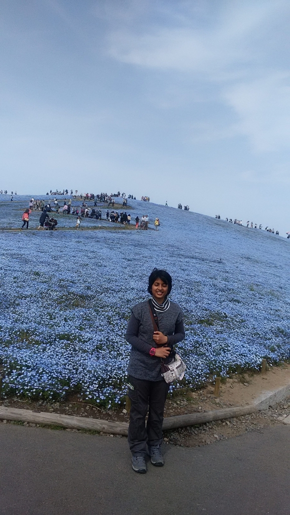 At Hitachi Seaside Park