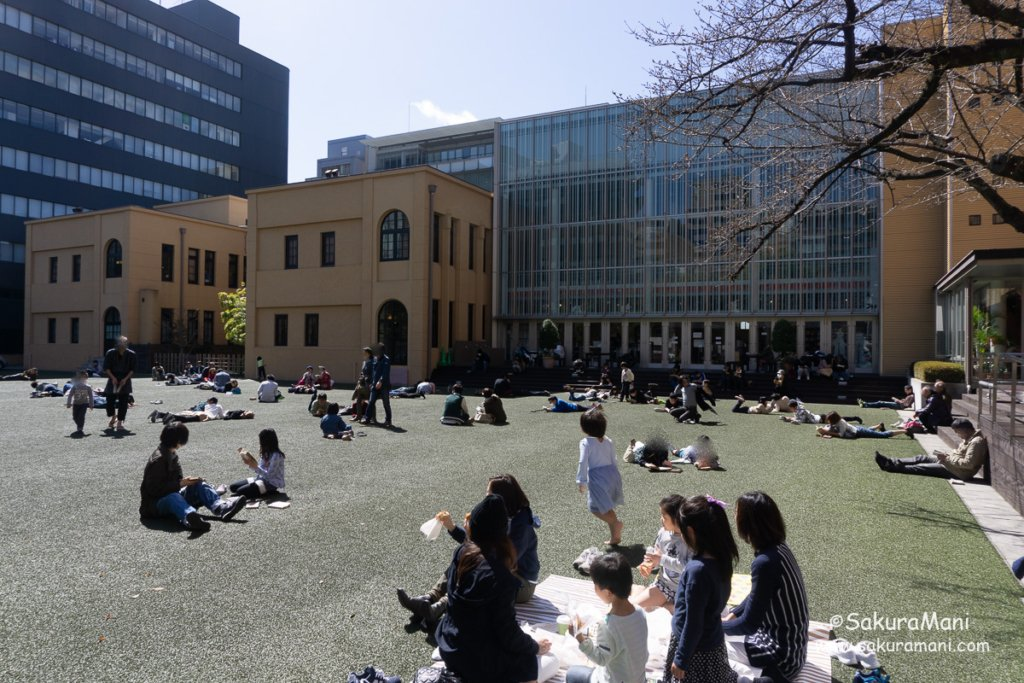 Kyoto Museum Outdoor Lawn